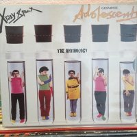 X-Ray Spex / The Anthology
