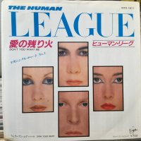 The Human League / Don't You Want Me