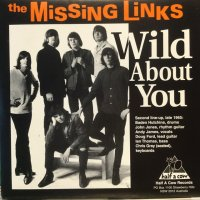 The Missing Links / Wild About You