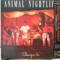 Animal Nightlife / Shangri-La