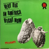 Voice Of Authority / Very Big In America Right Now