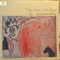 Graham Coxon / The Sky Is Too High