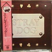 Stray Dog / Stray Dog