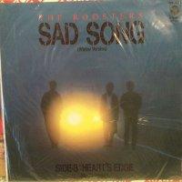 ルースターズ / Sad Song (Winter Version)