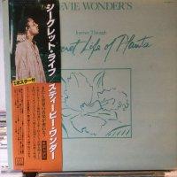 Stevie Wonder / Journey Through The Secret Life Of Plants