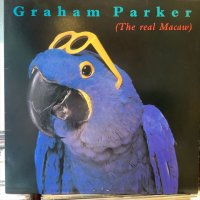Graham Parker / The Real Macaw