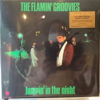 The Flamin' Groovies / Jumpin' In The Night