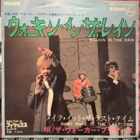 The Walker Brothers / Walking In The Rain