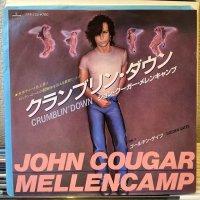 John Cougar Mellencamp / Crumblin' Down